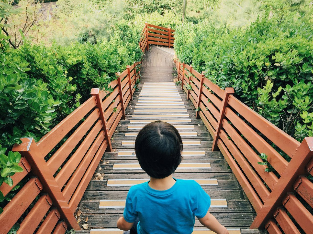 Kids Boy Nature Woods Stairs From Behind Outdoors