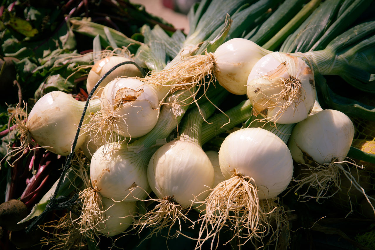 Close-Up Of Onion For Sale