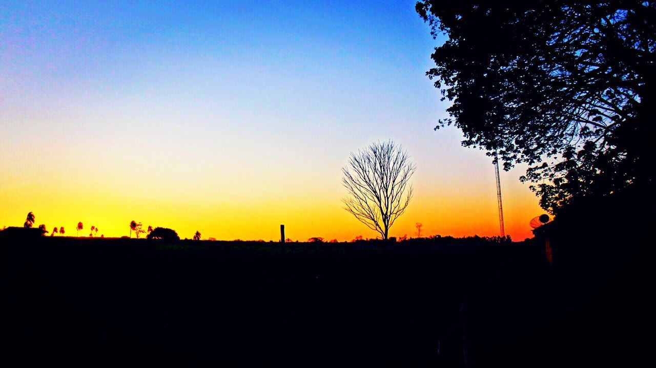 silhouette, sunset, tree, beauty in nature, orange color, nature, tranquility, sky, clear sky, scenics, tranquil scene, landscape, outdoors, no people, day