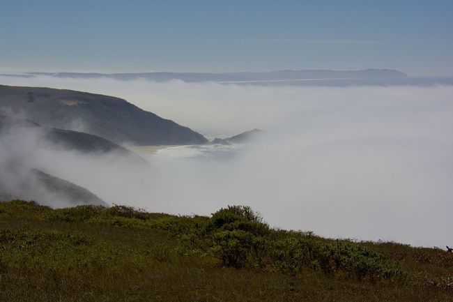 Beach Coastline Cove Fog Landscape Nature Non-urban Scene Ocean Outdoors Point Reyes National Seashore Sand Scenics Tranquil Scene