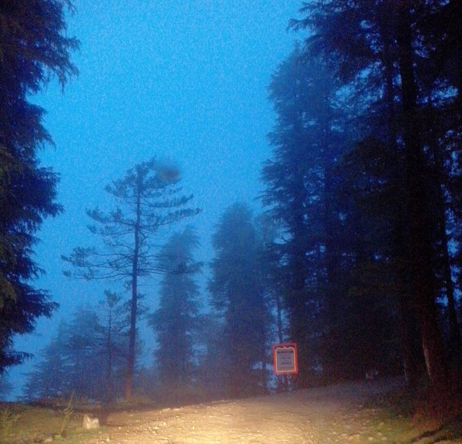 The Journey Is The Destination On The Way Mountains And Sky Dusk Colours Dusk In The Woods Shimla Hills
