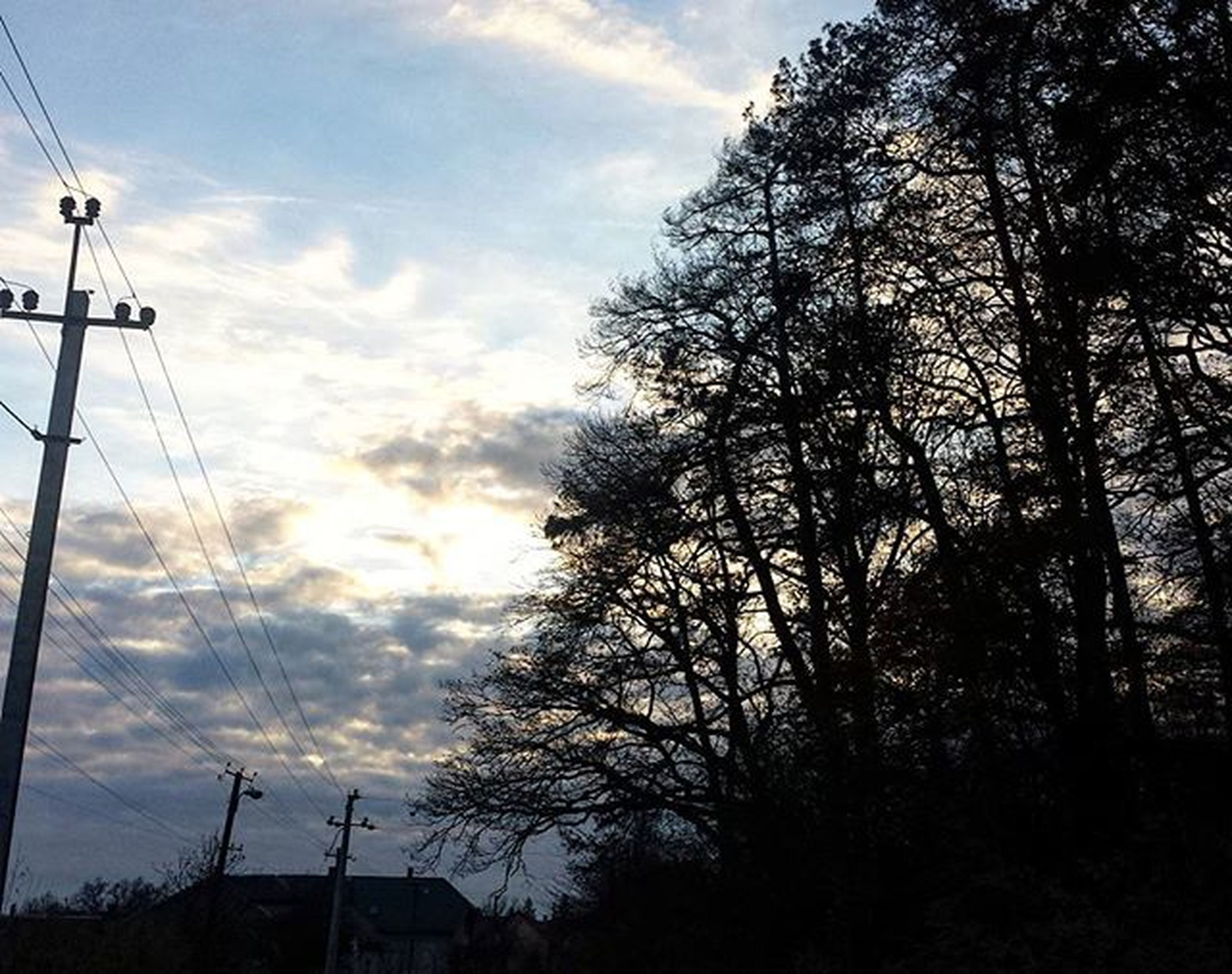 tree, silhouette, sky, power line, electricity pylon, low angle view, sunset, electricity, cloud - sky, street light, nature, cable, tranquility, dusk, connection, power supply, cloud, beauty in nature, cloudy, outdoors