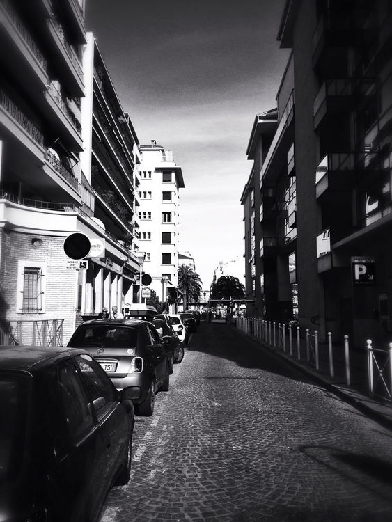 blackandwhite in Toulon by Giki