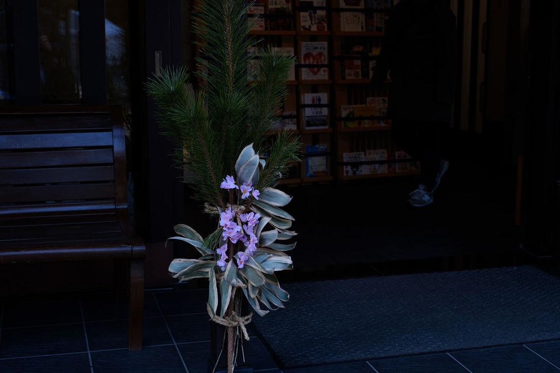 野田櫻木神社/Sakuragi Jinja Shrine Fujifilm FUJIFILM X-T2 Fujifilm_xseries Japan Japan Photography NoDa Sakuragi Jinja Shrine Shrine Shrine Of Japan X-t2 櫻木神社 神社 野田市