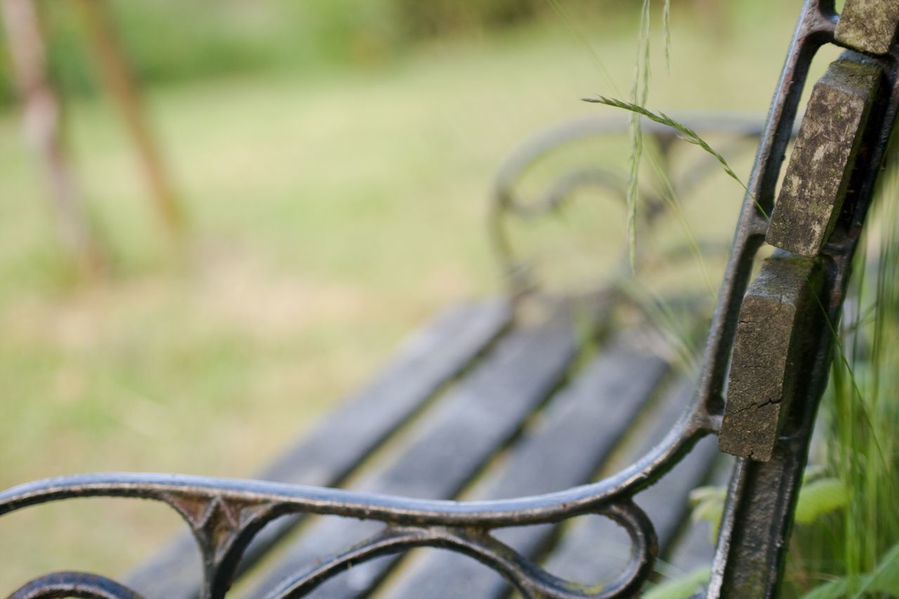 metal, focus on foreground, no people, outdoors, day, close-up, nature, bicycle rack, grass