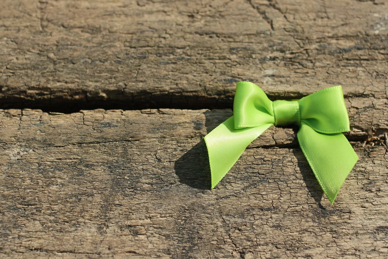 Beautiful stock photos of bow, Close-Up, Day, Green Color, No People