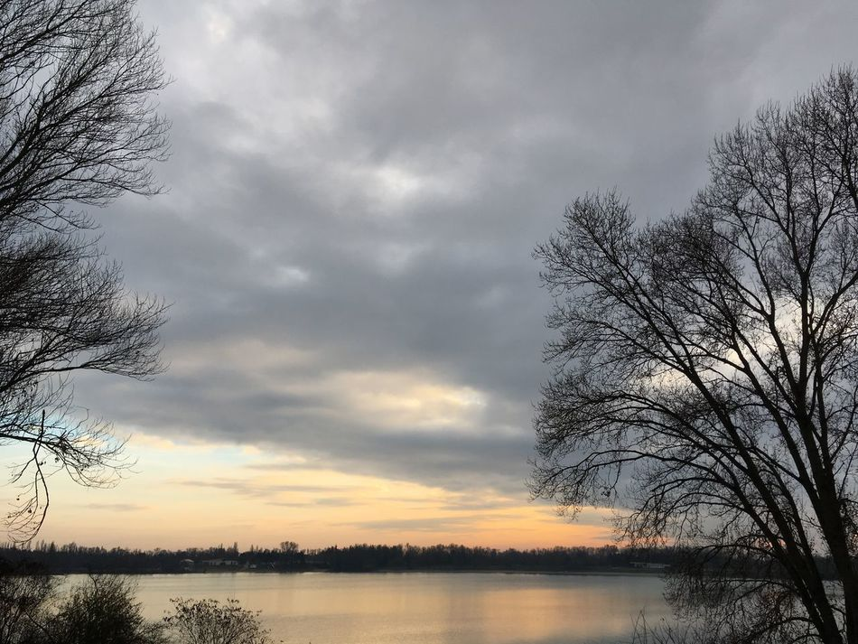 Sky Nature Beauty In Nature Tree Water Scenics Tranquil Scene Tranquility Landscape Unedited Nofilter Beauty In Nature Forest Silhouette Outdoors Bare Tree No People Cloud - Sky Sunset Idyllic Lake Day