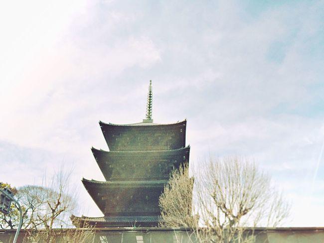 東寺の塔 Architecture Built Structure Sky Place Of Worship Building Exterior Religion Low Angle View Tree No People Day Cloud - Sky Spirituality Travel Destinations Outdoors Nature Cultures