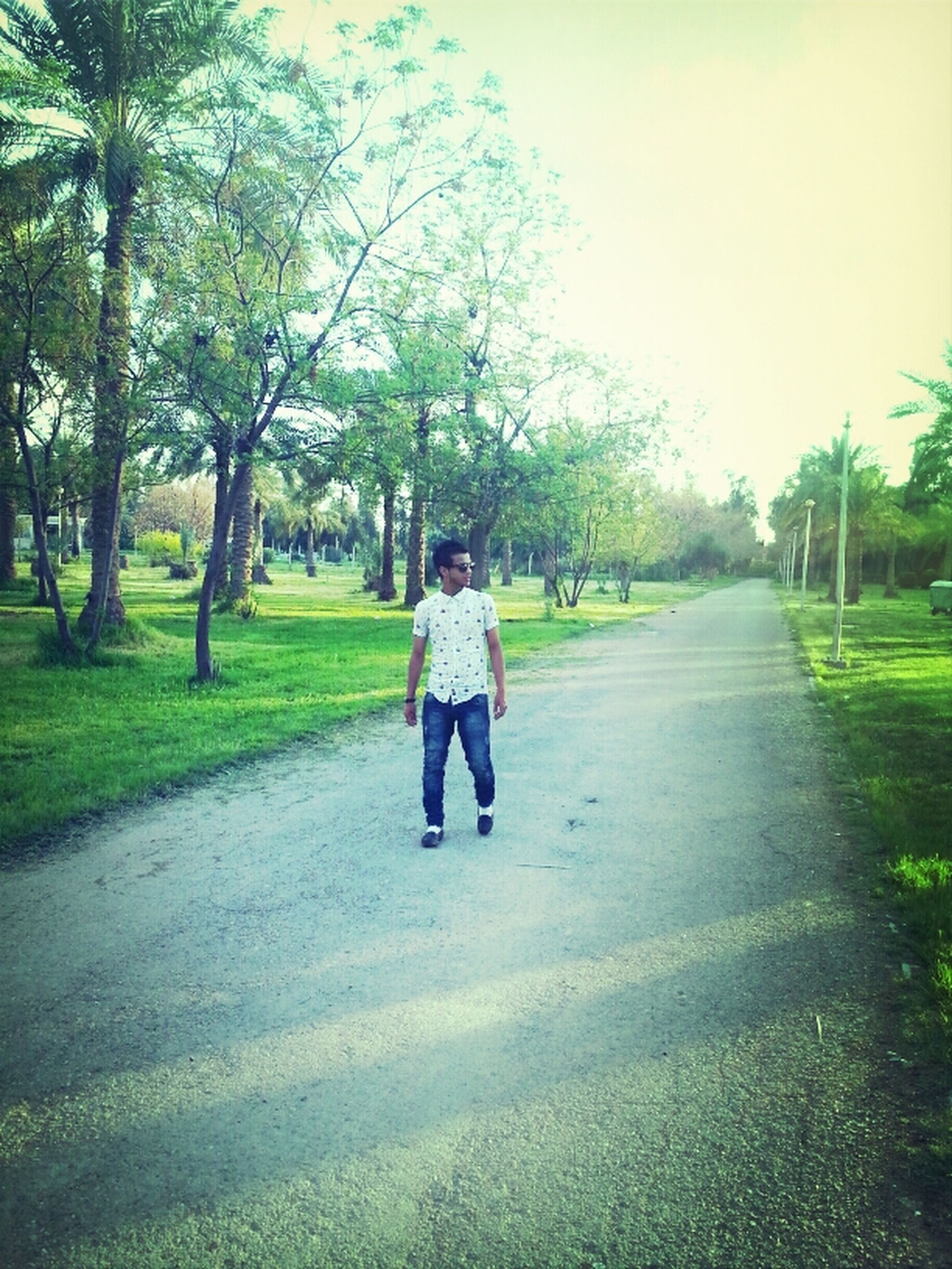 full length, tree, the way forward, lifestyles, rear view, walking, casual clothing, leisure activity, road, diminishing perspective, grass, childhood, footpath, vanishing point, park - man made space, day, street, growth
