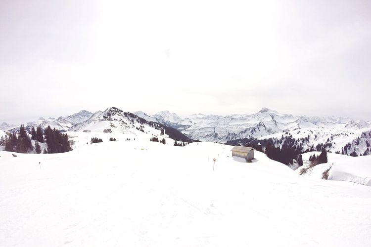 The landscape... Skiing Alps