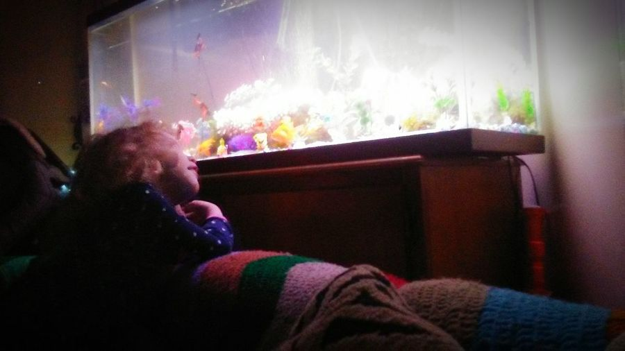 Indoors  Winter Multi Colored Warm Clothing Sitting Day Children Only One Girl Only Fish Tank Childhood Memories Imagining I Was Daydreaming EyeEm Gallery EyeEmbestshots EyeEmBestPics