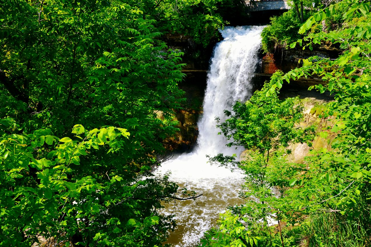 Minnesota Nature Water Green Color Motion Nature Beauty In Nature Waterfall Freshness Outdoors Long Exposure Scenics Day Mpls Parks Spring Spring Into Spring No People Grass Mn Minneapolis Minnesota Tranquility Growth Beauty In Nature Green Color Freshness