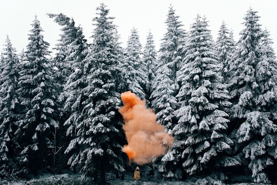 Beautiful stock photos of snow, Cold Temperature, Covered, Covering, Day