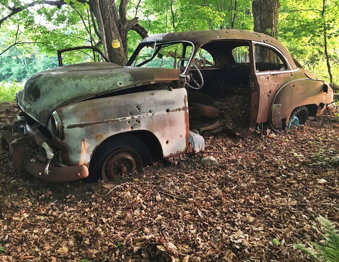 Abandoned Car Rust Catskills Forest