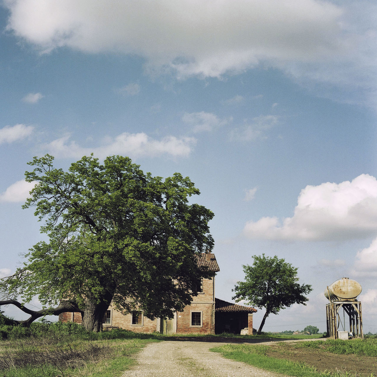 Abandoned Farmhouse Analogue Photography Built Structure Cloud - Sky Deserted Farm Deserted House Landscape Remoteness Rural Scene Sky Tranquility Tree 6x6