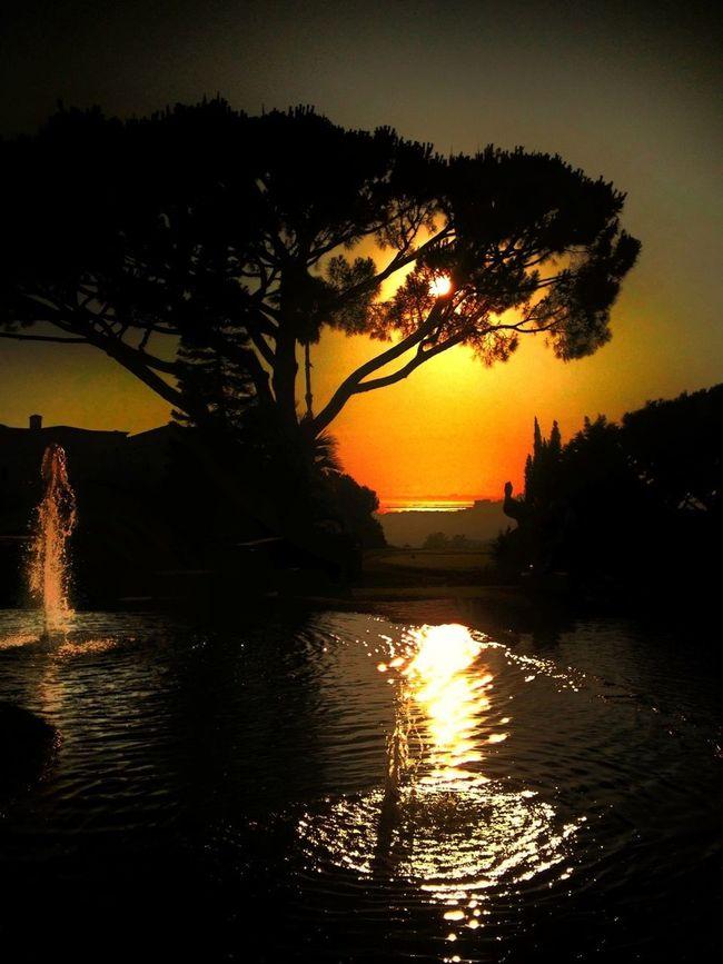 Far off... The sea ... Good night dear friends ✨