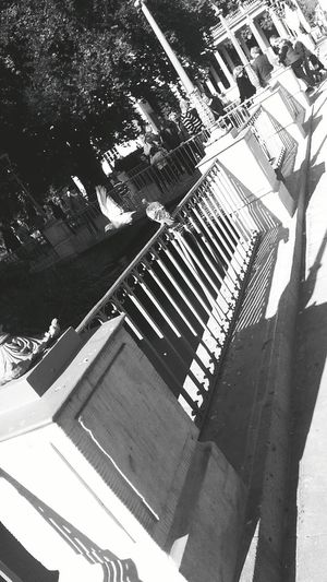 Tbt💕 Memories Warsaw