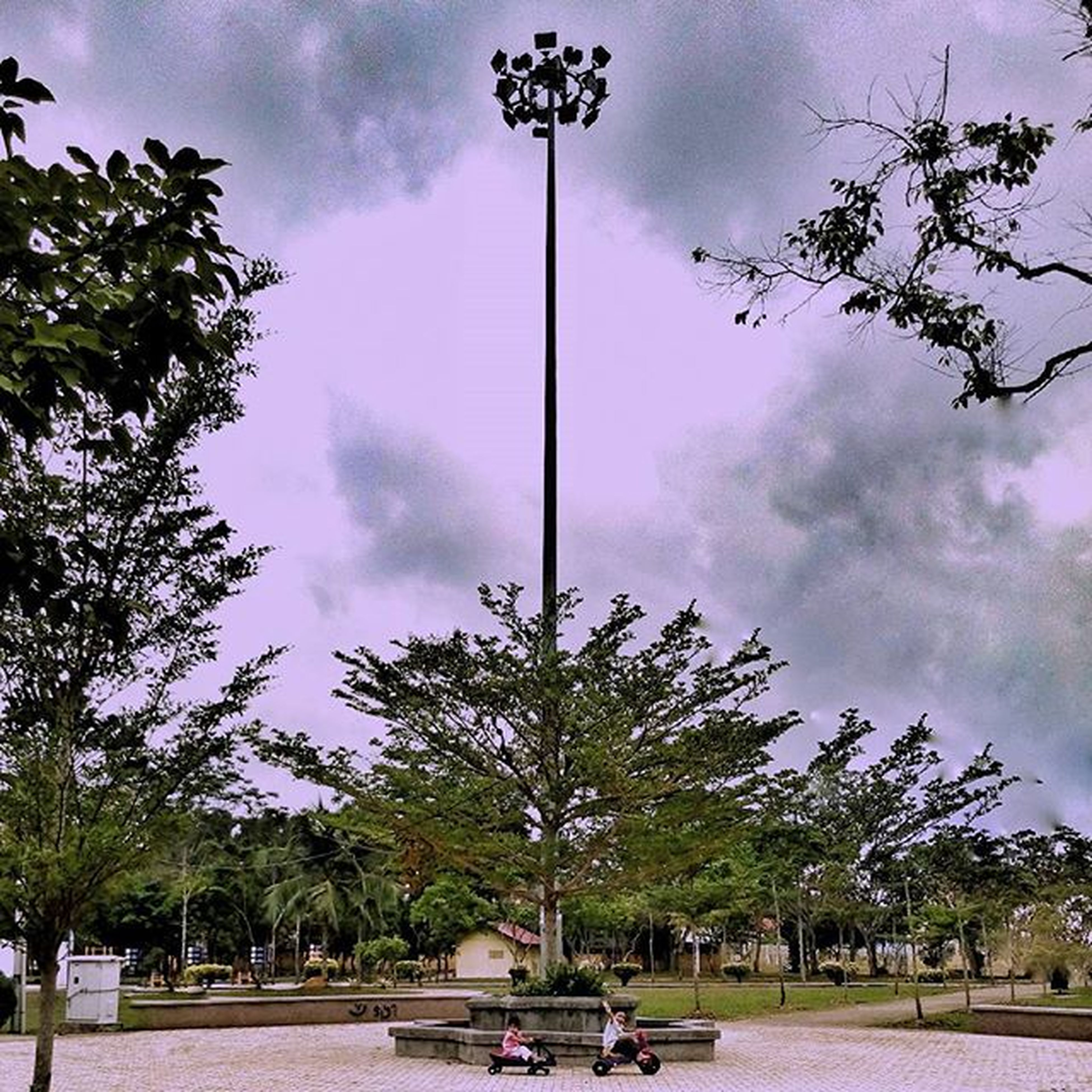 tree, sky, cloud - sky, street light, cloudy, cloud, transportation, park - man made space, street, growth, car, mode of transport, land vehicle, road, incidental people, nature, day, outdoors, low angle view, city