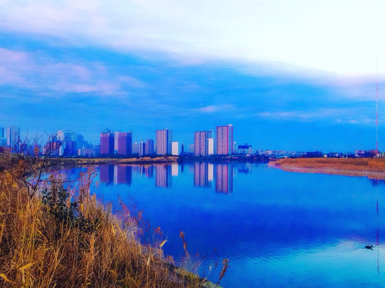 sky, architecture, built structure, building exterior, reflection, cloud - sky, water, skyscraper, no people, outdoors, city, modern, nature, day, urban skyline, cityscape, tree