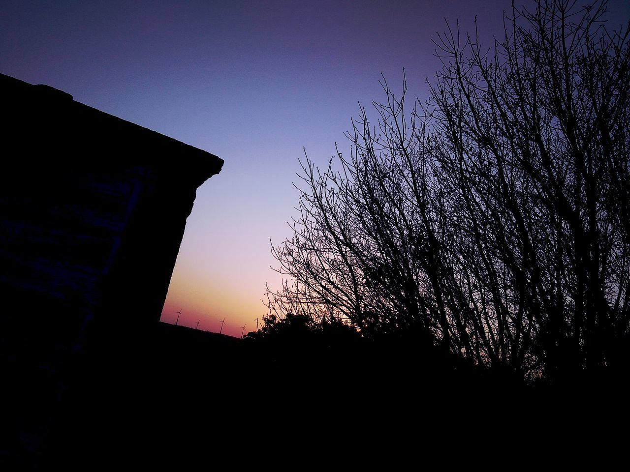 sunset, silhouette, low angle view, no people, sky, beauty in nature, tree, nature, clear sky, built structure, outdoors, architecture, day