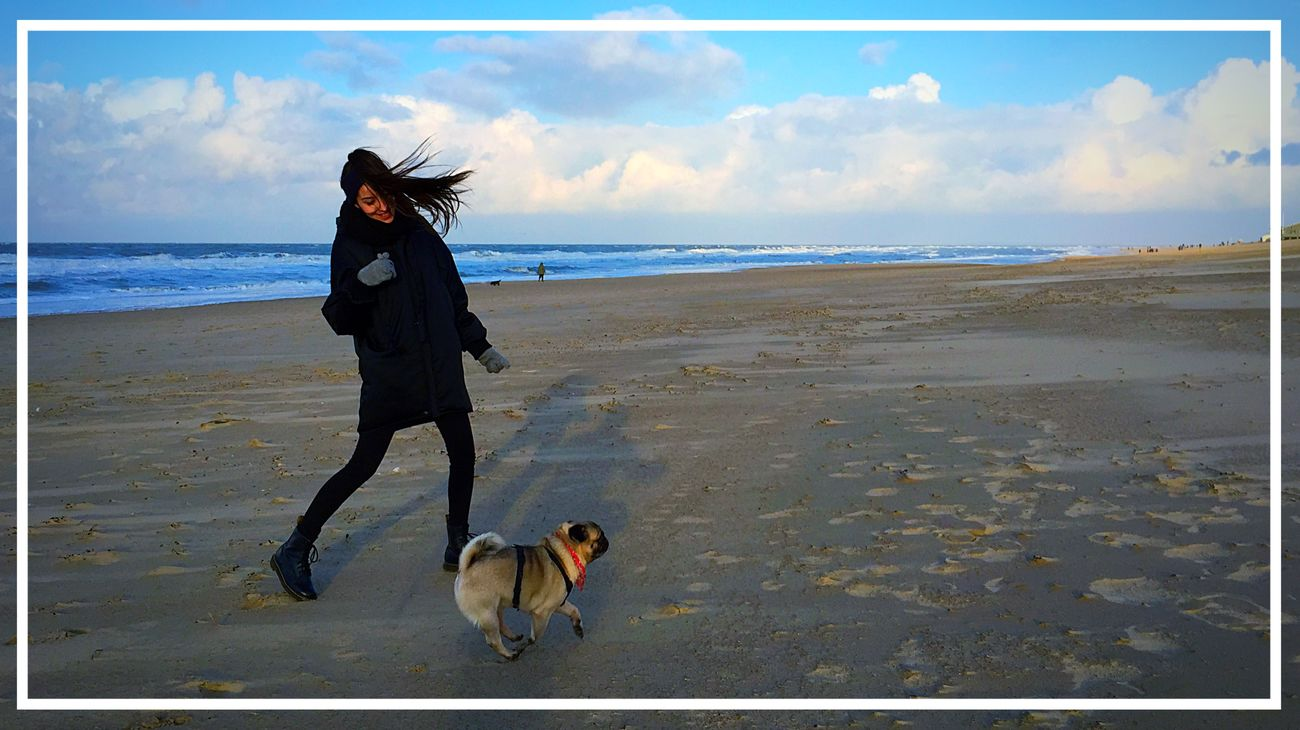 Sea And Sky Lina Playing With The Animals This Must Be The Place Colour Portrait