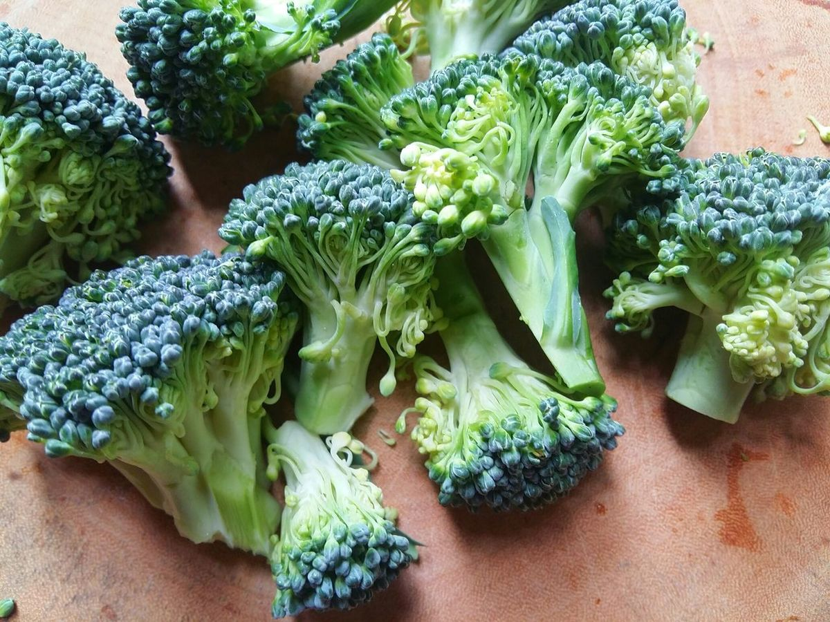 Broccoli. Vegetable Healthy Eating Green Color Broccoli Freshness Food Food And Drink Close-up Broccoli Sprouts Nature Vegetables Vegetablelover Healty Food Healty Eating