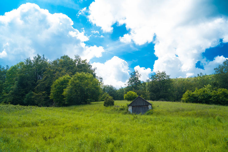 Beauty In Nature Cloud - Sky Country House Field Grass Green House Landscape Nature No People Outdoors Sky Tree