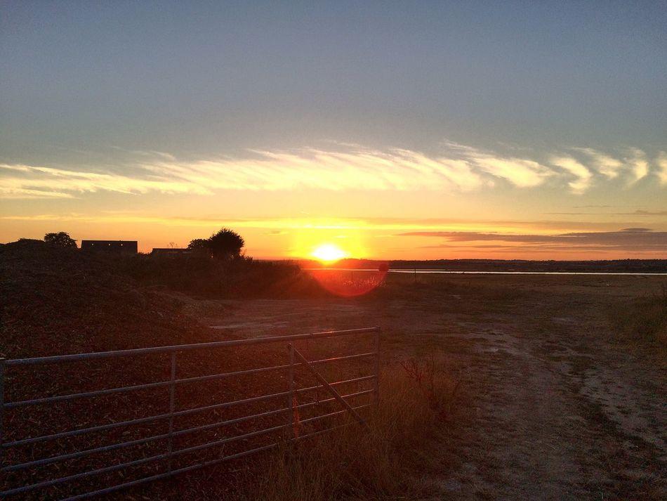Sunset in Mersea
