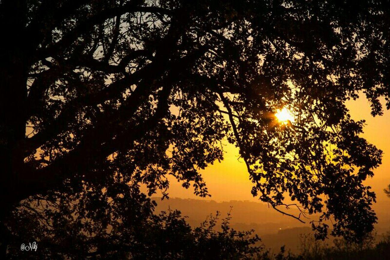 Tramonti__italiani Sunset #sun #clouds #skylovers #sky #nature #beautifulinnature #naturalbeauty Photography Landscape ? Sunrise_sunsets_aroundworld Sunset #sun #clouds #skylovers #sky #nature #beautifulinnature #naturalbeauty #photography #landscape