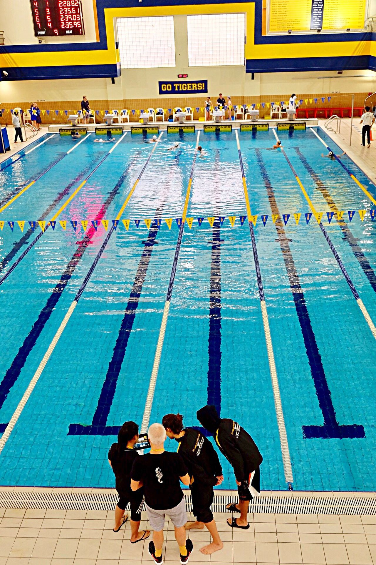 Poolside Sport Swimming Pool Competition Swimming Athlete High Angle View Sports Training Full Length Motivation Competitive Sport Indoors  People Swimming Lane Marker Starting Line Water Sports Race