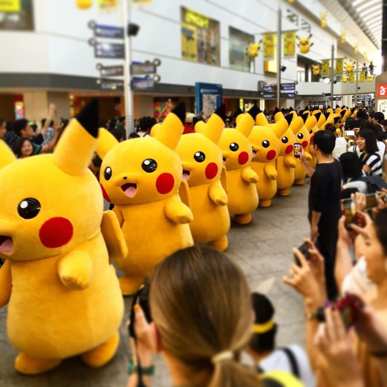 Pikapika Pikachu Pikachu Parade Sakuragicho Minatomirai Festival Pikachu Festival Cute KAWAII Yellow All Cute Everything Crowd Japan Nihon Thisisjapan EyeEmNewHere Yokohama Pokémon EyeEmNewHere