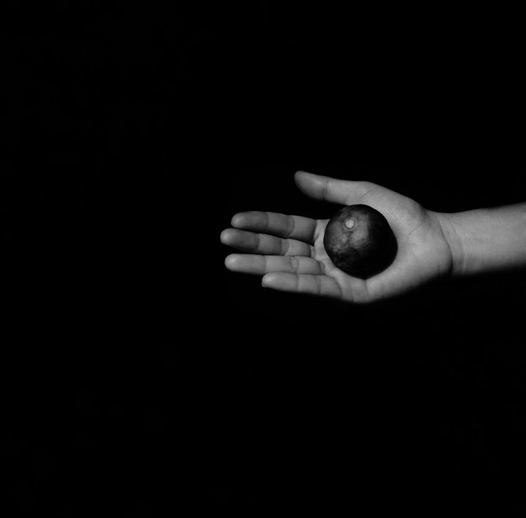 Human Hand Human Body Part Black Background One Person Close-up People Indoors  One Woman Only Day Leamon On Hand Leamon Black And White