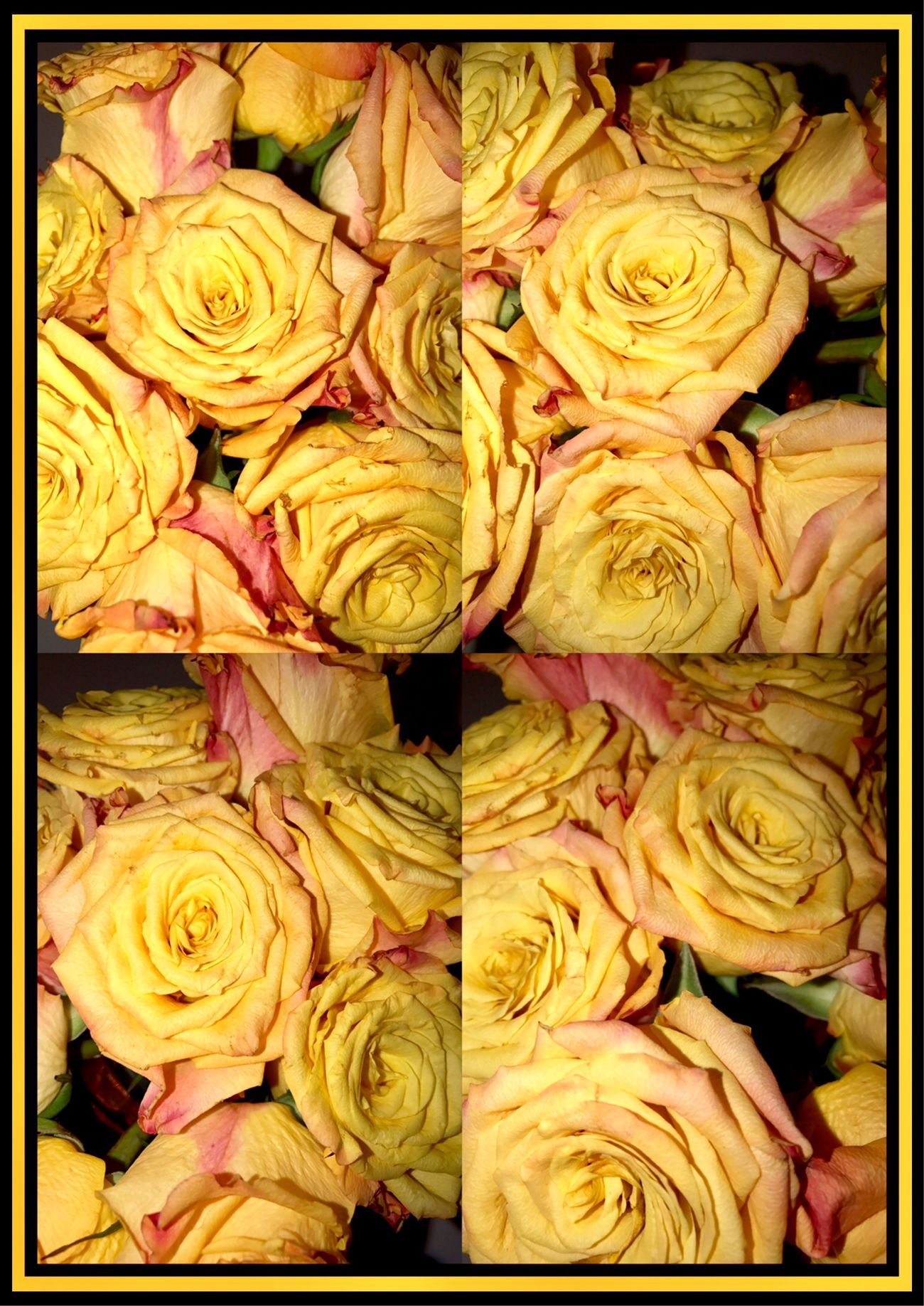 Roses 🌹🍃🌹 Roses Orange Rose Bouquet Gift Flowers_collection Flowers Of EyeEm Flower Photography Flowercollage 🌹🍃🌹