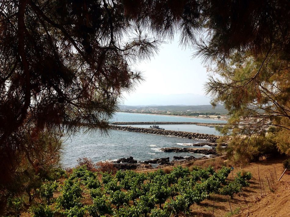 Kolimvary Kolimbary Crete Greece Greece Crete Sea Nature