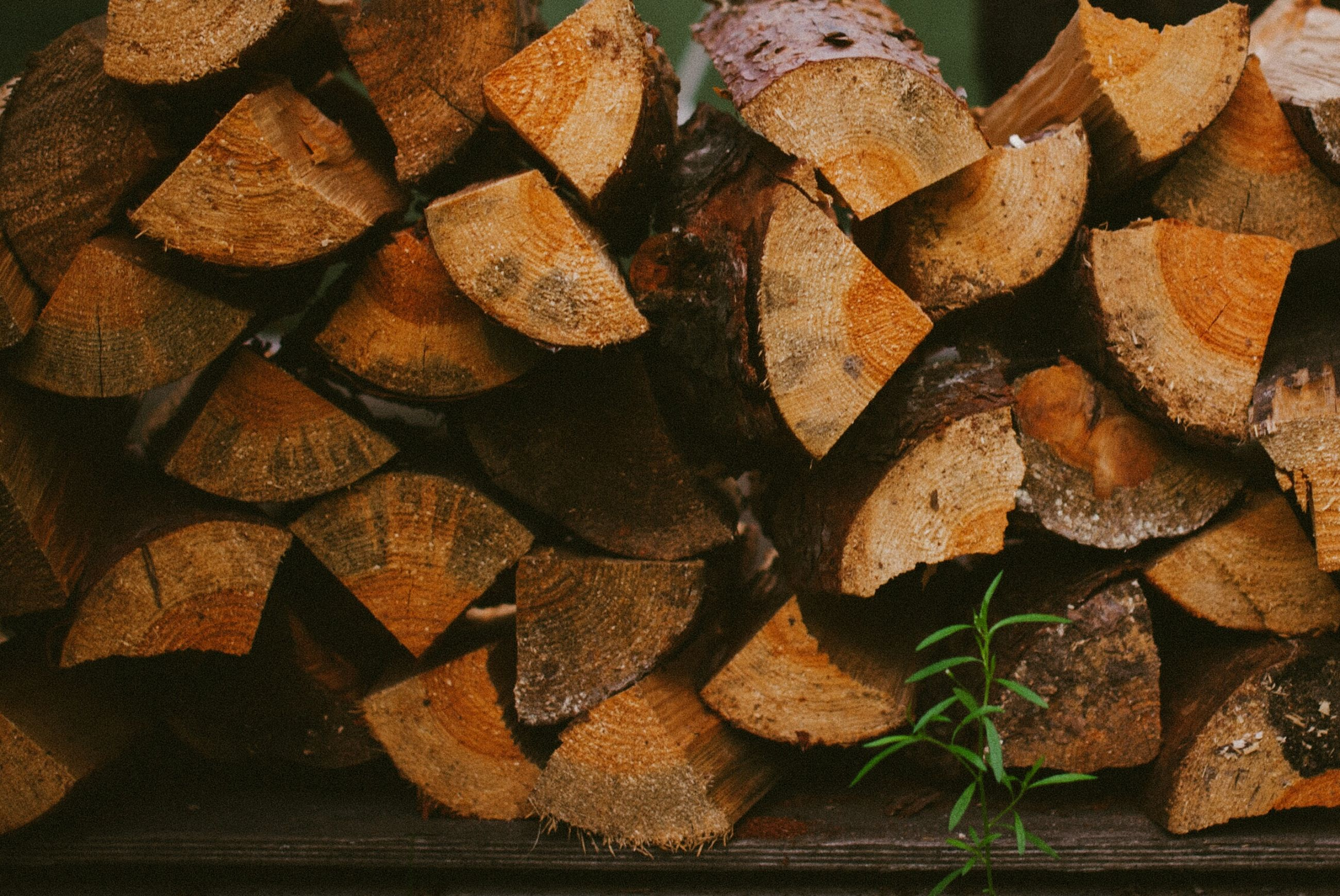 large group of objects, abundance, full frame, firewood, deforestation, close-up, brown, lumber industry, backgrounds, log, dry, high angle view, stack, freshness, wood - material, still life, leaf, food and drink, no people, food