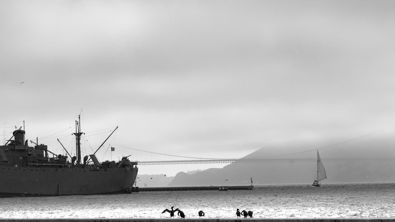 Pier 42 First Eyeem Photo San Francisco Wharf Bnwphotography Bnw_captures Golden Gate Bridge