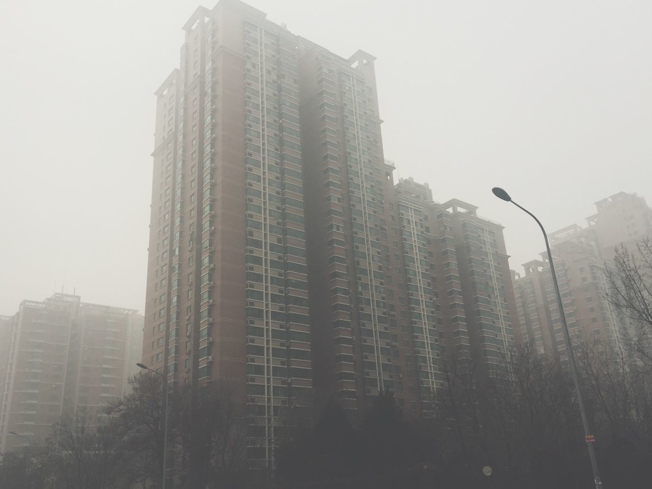 city, skyscraper, architecture, fog, low angle view, building exterior, day, tree, no people, outdoors, modern, sky