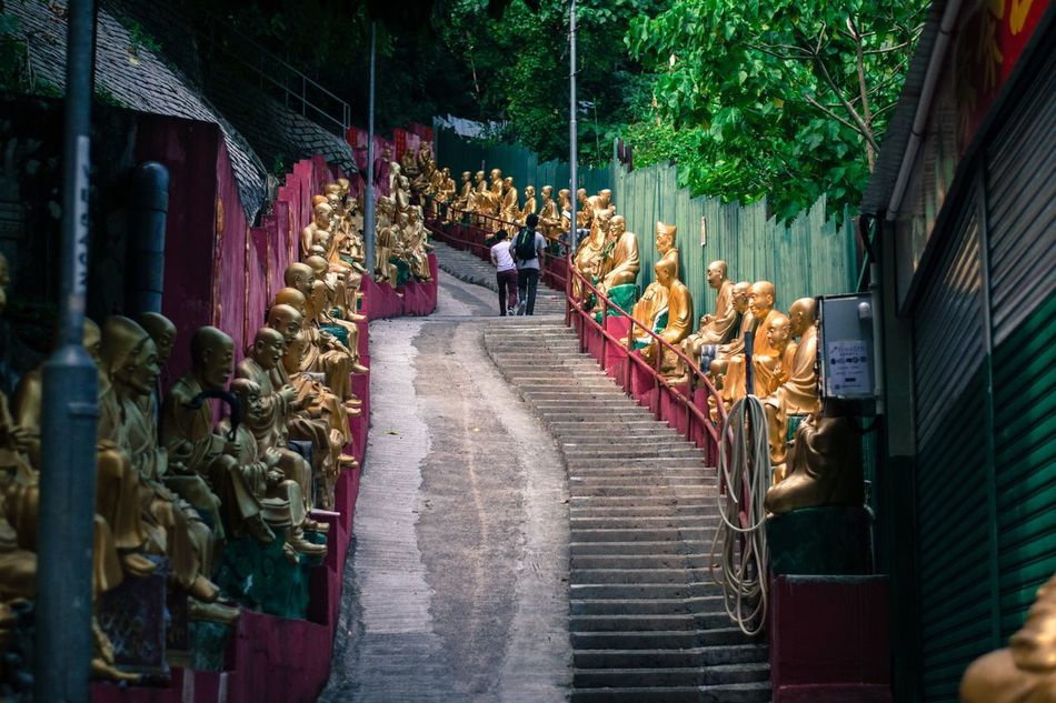 A path up the mountain tucked behind a city. Miles Away Shatin HongKong 10000 Buddhas Variation Multi Colored The Way Forward Day Statue Sculpture Spirituality Gold Religion Red Wall Buddhism Asian Culture Travel Destinations Tree