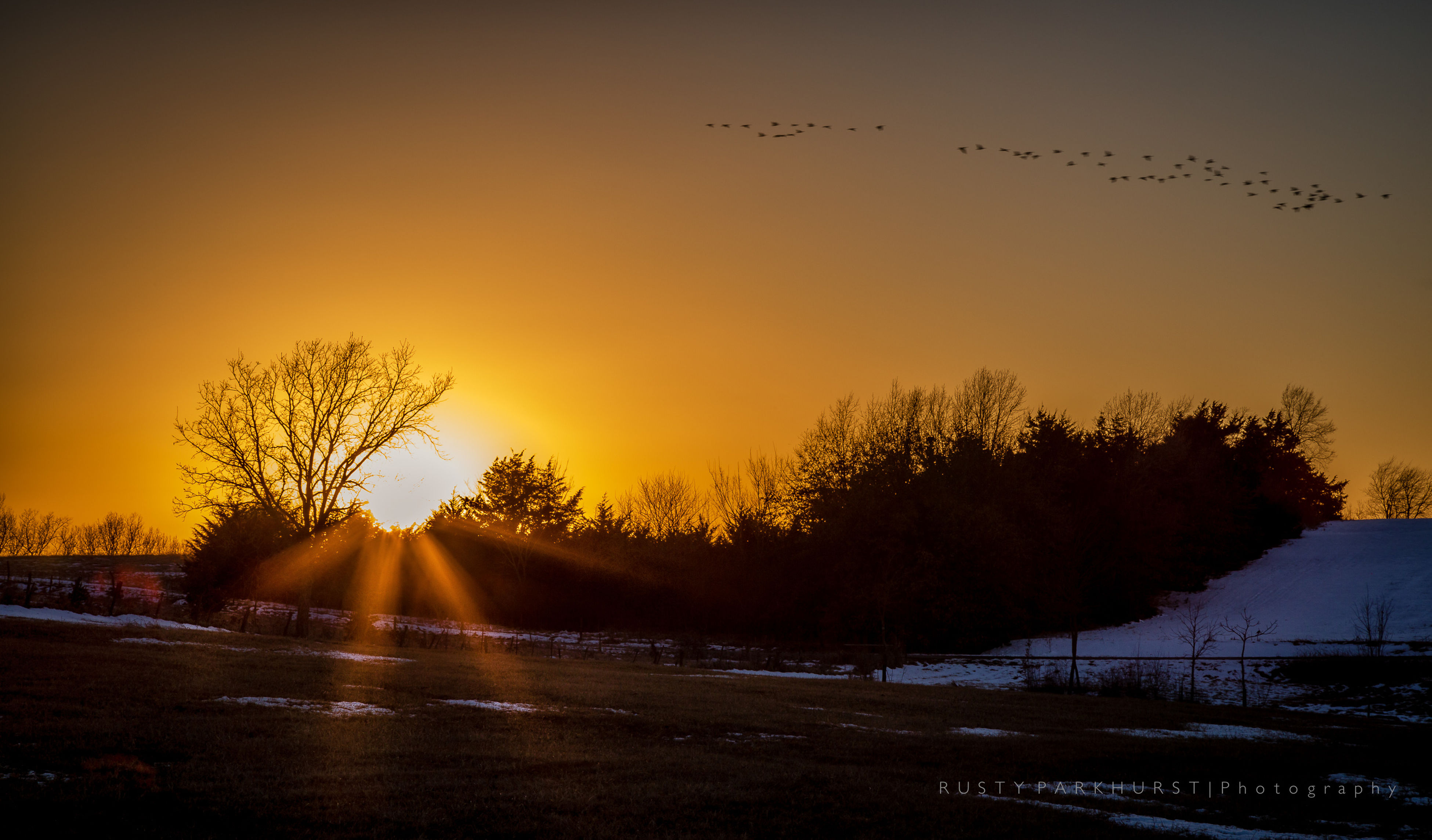 sunset, sun, tree, tranquility, tranquil scene, scenics, beauty in nature, nature, orange color, sunlight, idyllic, sky, outdoors, no people, landscape, the way forward, sunbeam, growth, non-urban scene, remote