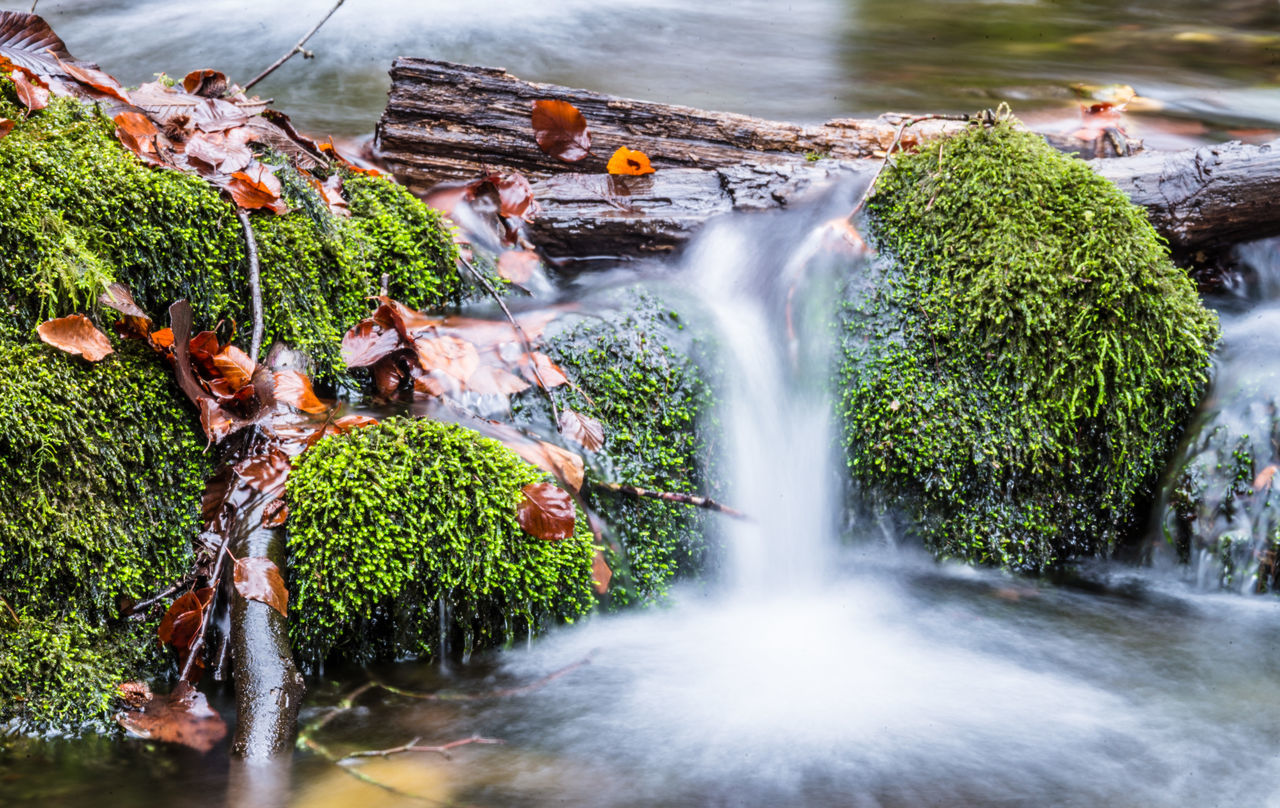 motion, waterfall, water, long exposure, blurred motion, day, outdoors, no people, nature, tree, freshness, beauty in nature