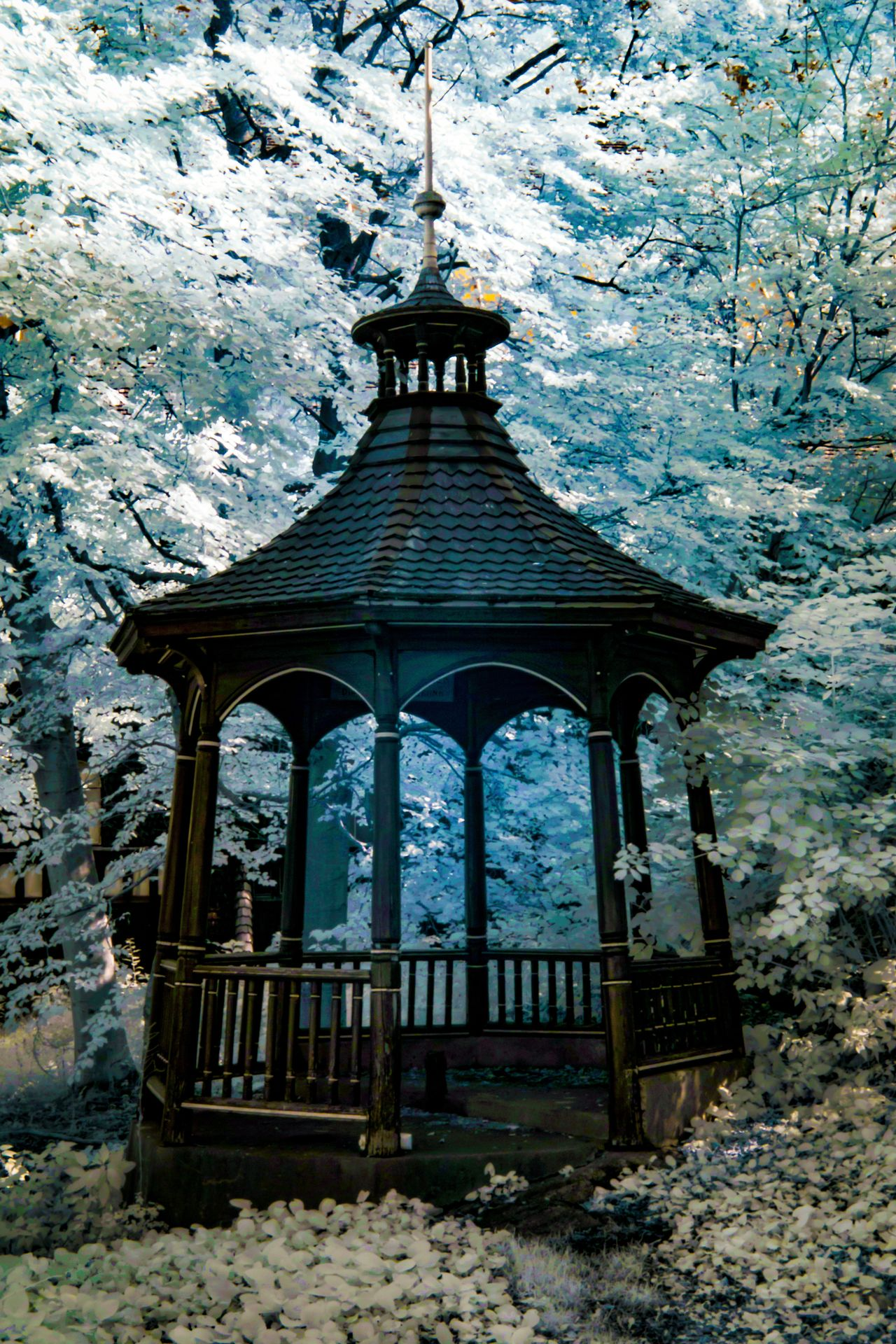 Old-Fashioned Gazebo [IR] 720nm Architecture Brown Djurgården Enchanted  Enchanted Forest Enchanted Path Woods Forest Fine Art Photography Flowers Foliage Forest Gazebo Infrared Infrared Photography Old Fashioned Pastel Power Pavilion Shade Stockholm Stockholm, Sweden Travel Wooden Woods I ♥ Photography EyeEm Best Shots