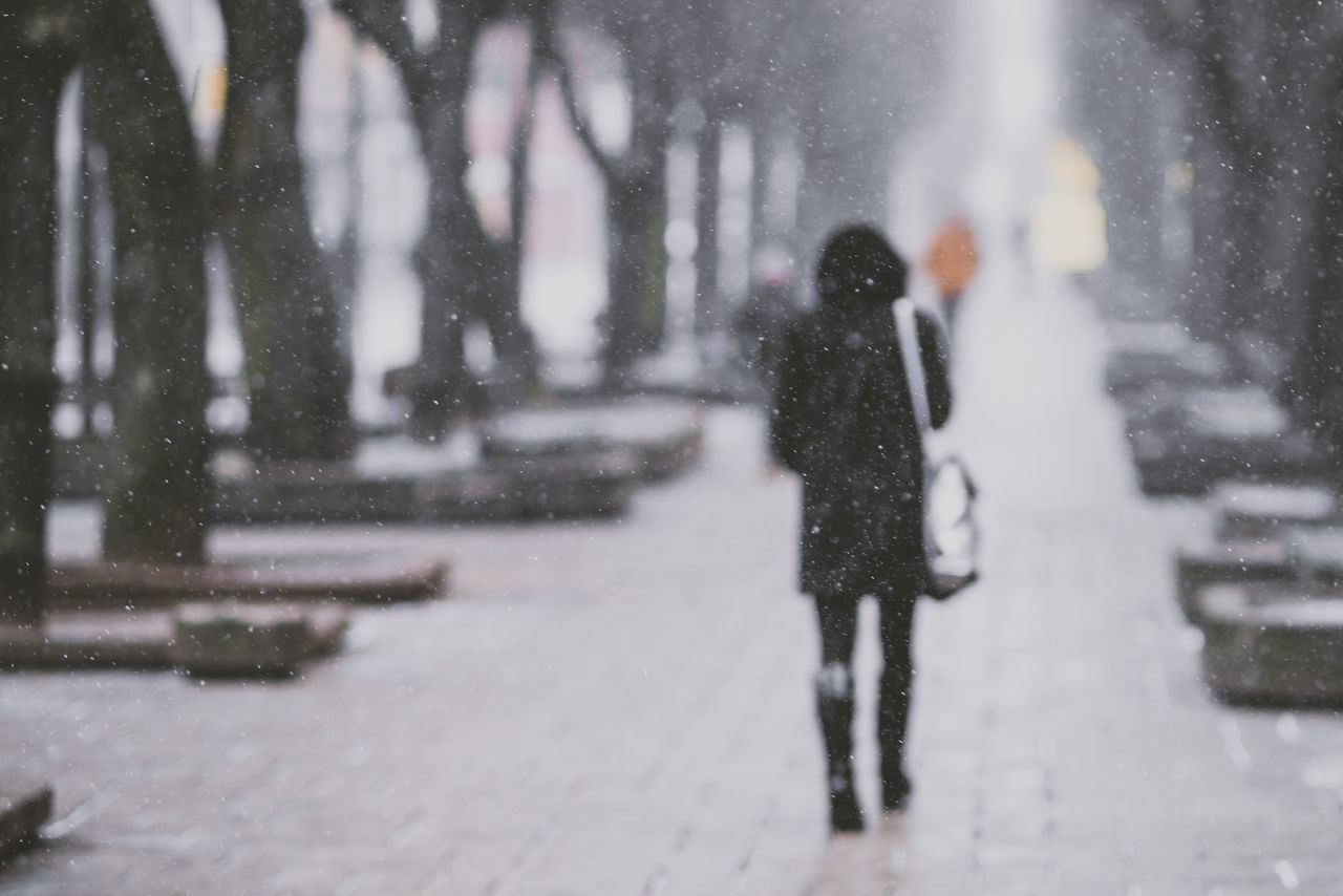 Blizzard Bad Weather Blizzard City Cold Temperature Day Full Length Leisure Activity Lietuva Lifestyles Nature Outdoors People Real People Rear View Snow Snowfall Snowing Two People Walking Warm Clothing Weather Winter