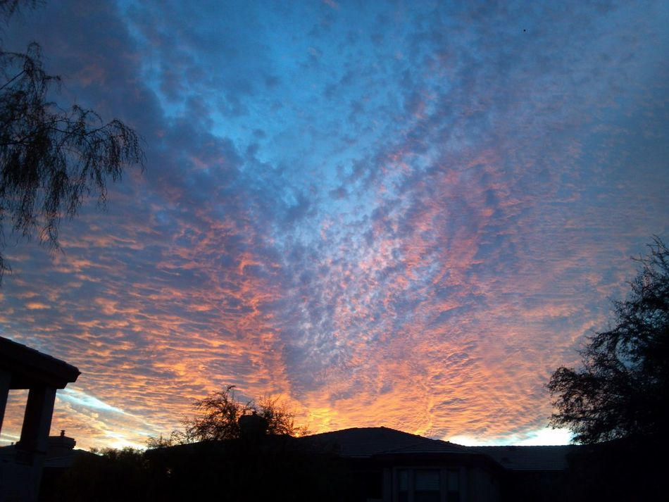 Sick wit it Sunset Silhouettes Sunset_collection Sunset Cloudporn Clean Shot Klique Klique Check This Out