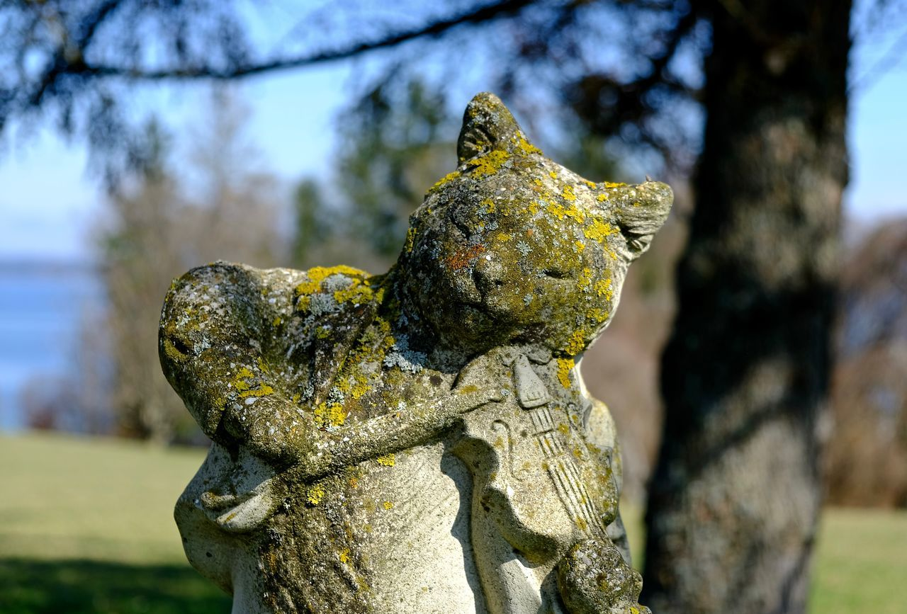 Bavaria Musician Nature No People Outdoors Sculpture Statue Tree