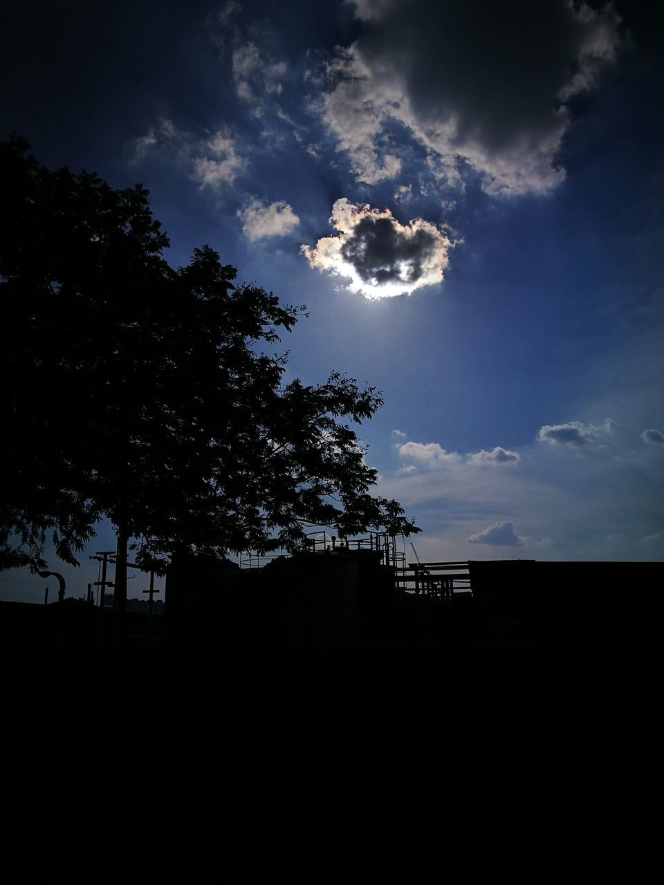 silhouette, sky, low angle view, nature, tree, no people, architecture, outdoors, day