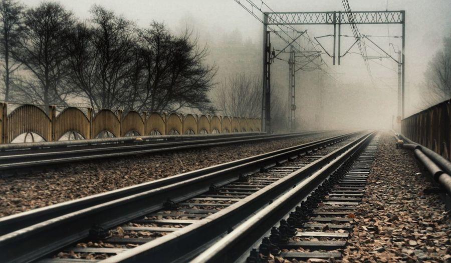 Foggy Morning Fog Railway Bridge Bridge In Fog Rails Railroad Rail Transportation Railway EyeEm Nature Lover EyeEm Best Shots Poland Poland Nature The Great Outdoors - 2016 EyeEm Awards