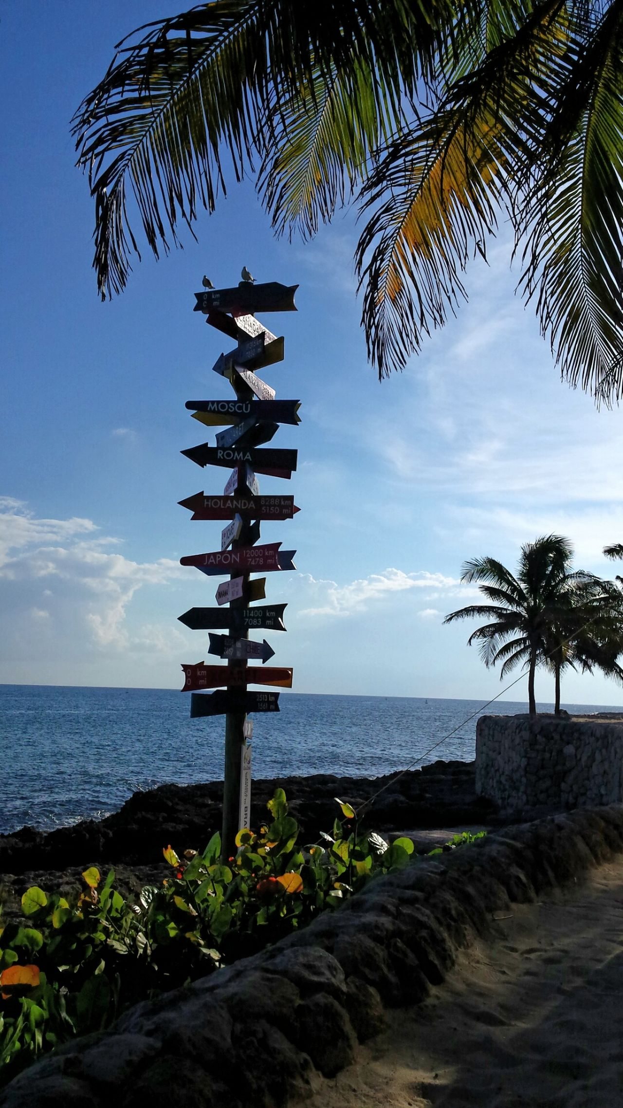 Q Questions Quest Questioning Life Question Everything Decisions Decisive Moment Way From My Point Of View From Where I Stand Sign Signal Arrow Arrow Symbol Arrows Destination Places Mexico Xcaret Caribbean Sea Caribbean Sea Sea And Sky Sea View Blue Wave