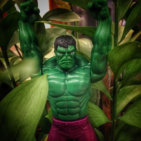 Hulk and the greens IPhoneography Iphoneonly Green Color Indoors  Pictureoftheday Picoftheday EyeEm Gallery Hello World