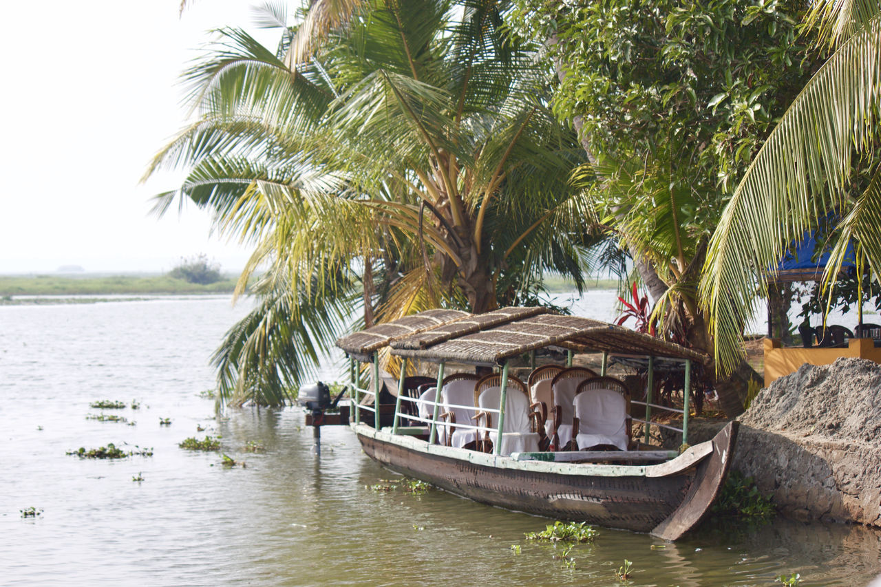Boating Coconut Trees Lake Lake View Lakeshore Lakeside Lakeview Lifestyles Nature Palm Tree People Plant Scenery Scenics Tranquil Scene Tranquility Travel Travel Destinations Traveling Tree Tree Water Water Reflections Waterfront