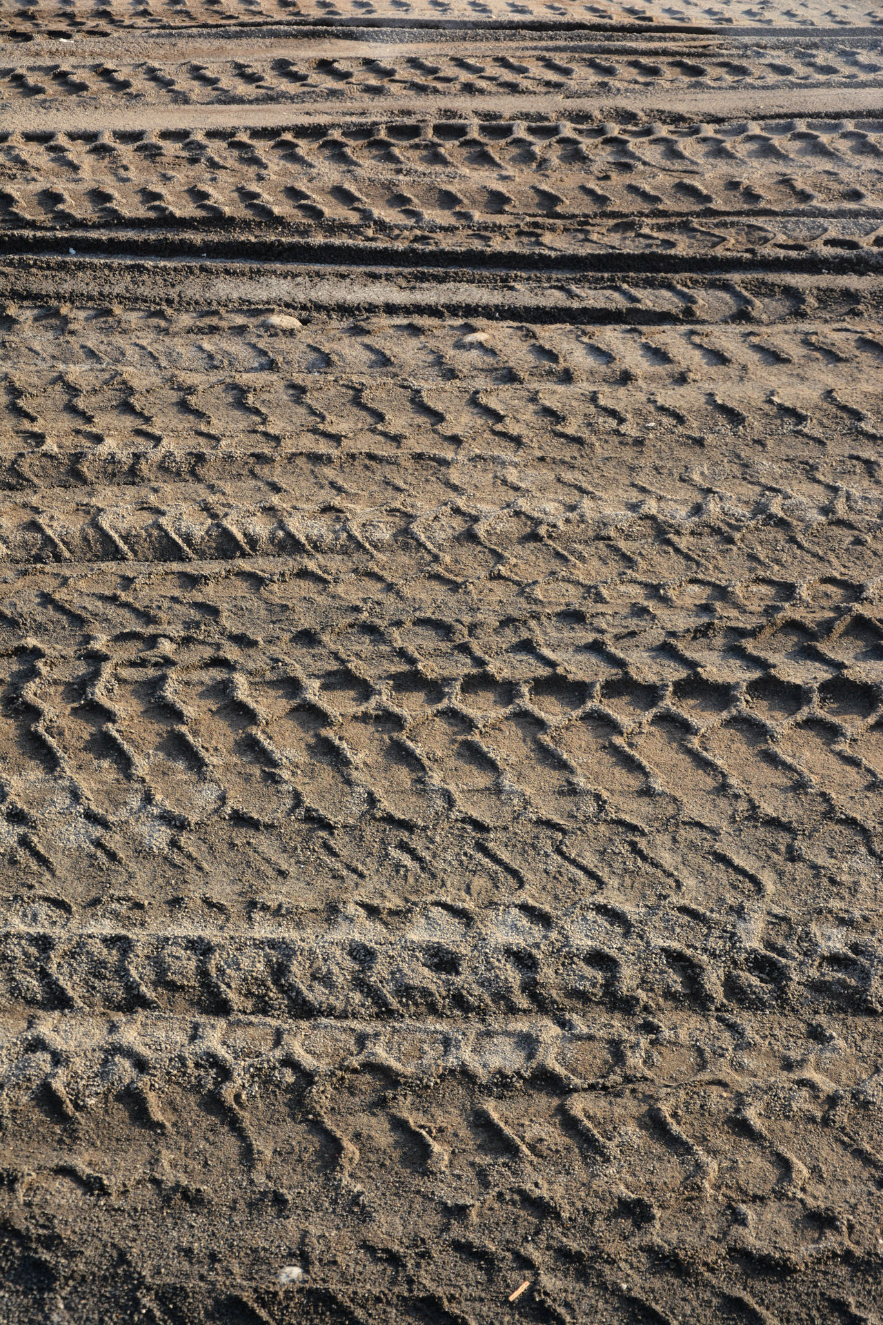 Arid Climate Backgrounds Beach Brown Close-up Day Desert Full Frame Impronte Nature No People Outdoors Pattern Pneumatic Preumatik Print Sand Sand Print Textured  Tire Print Tire Track